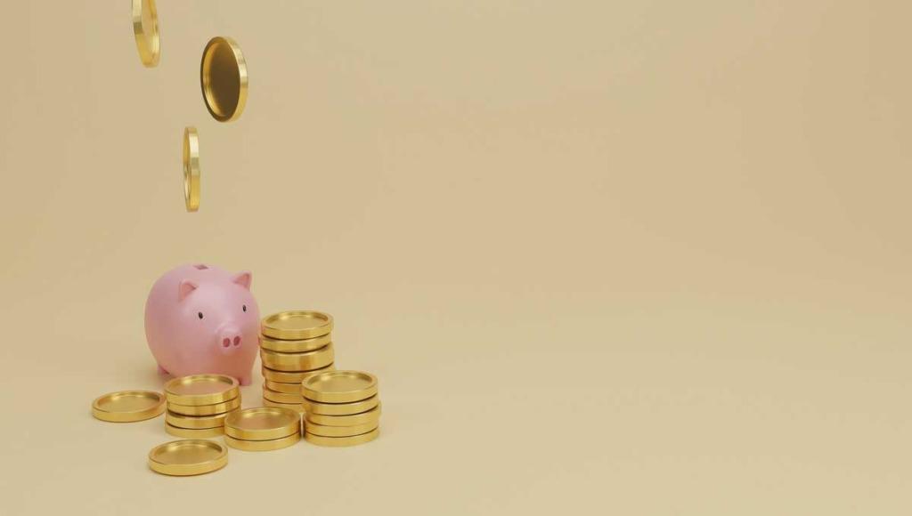 ザオプション入金方法で1番お得なのはどれ?